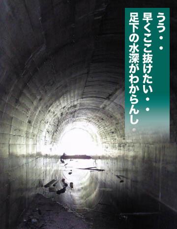 kame-06.jpg